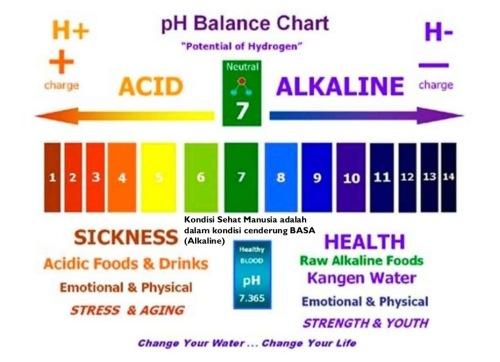Air Alkali Dari Kangen Water Untuk Terapi Pengobatan Osteoporosis Kaskus