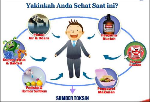 manfaat-detoksifikasi-untuk-kesehatan-tubuh